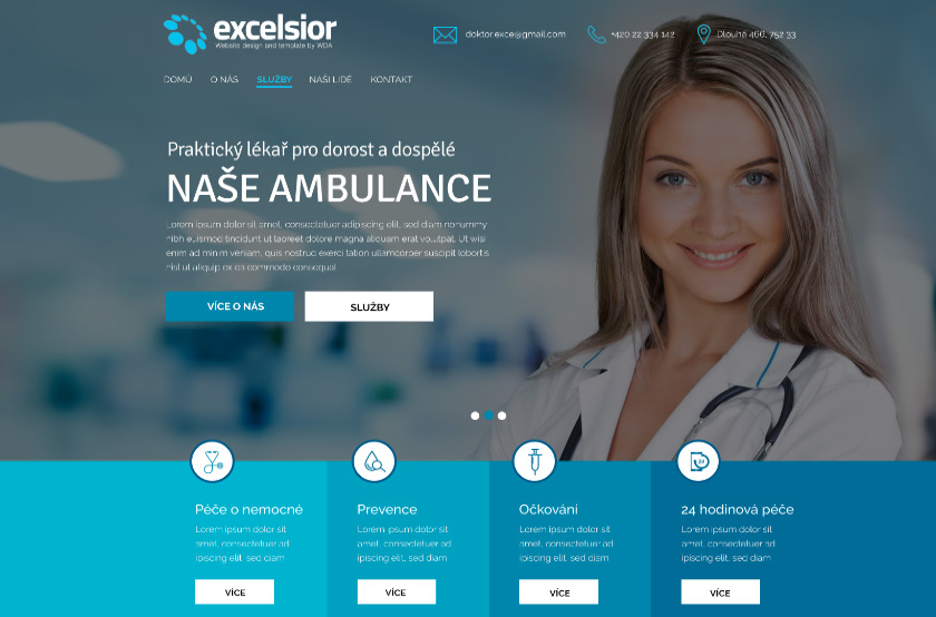 Excelsior Ambulance